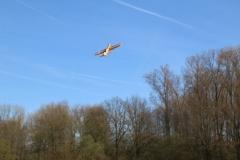 Fesselfliegen beim Anfliegen 2017